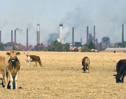 Llegar a cero emisiones netas de carbono para 2050, ¿es posible?